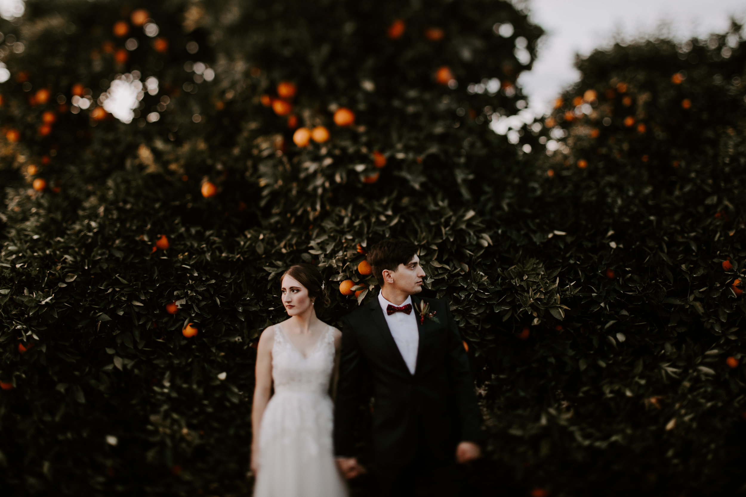 Seven Sycamores Ranch Wedding Gabby & Yosef Emily Magers Photography-660.jpg