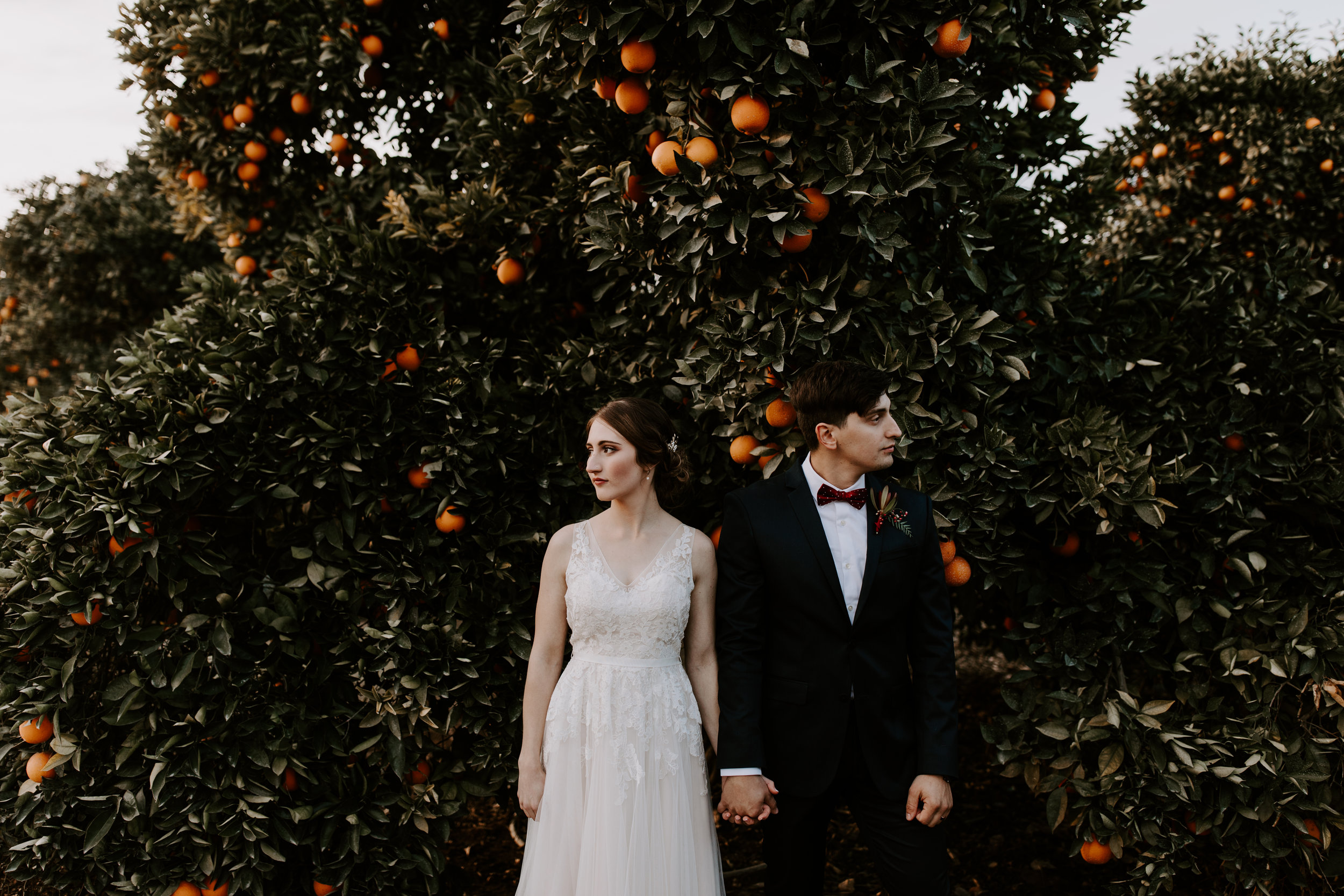 Seven Sycamores Ranch Wedding Gabby & Yosef Emily Magers Photography-650.jpg