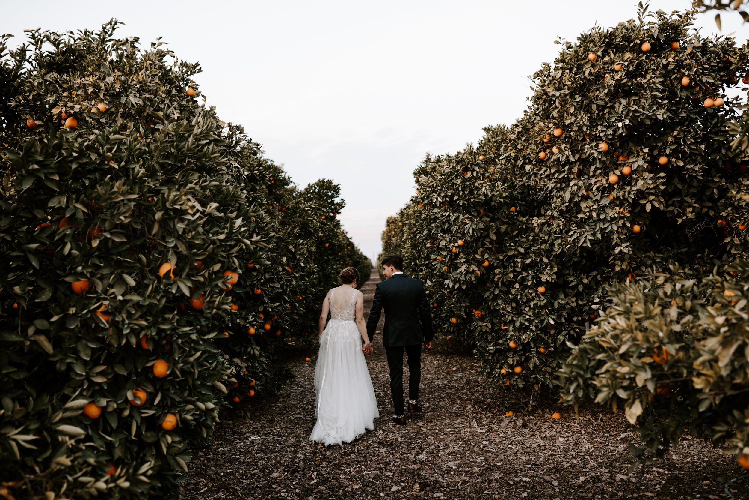 Seven Sycamores Ranch Wedding Gabby & Yosef Emily Magers Photography-672.jpg