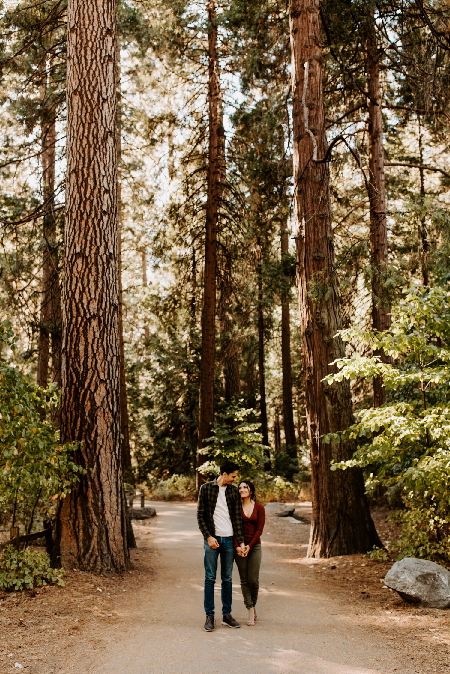 Couple standing in pine tree grove in Yosemite