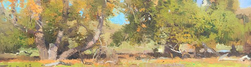 lofquist San Simeon Creek 1.jpg