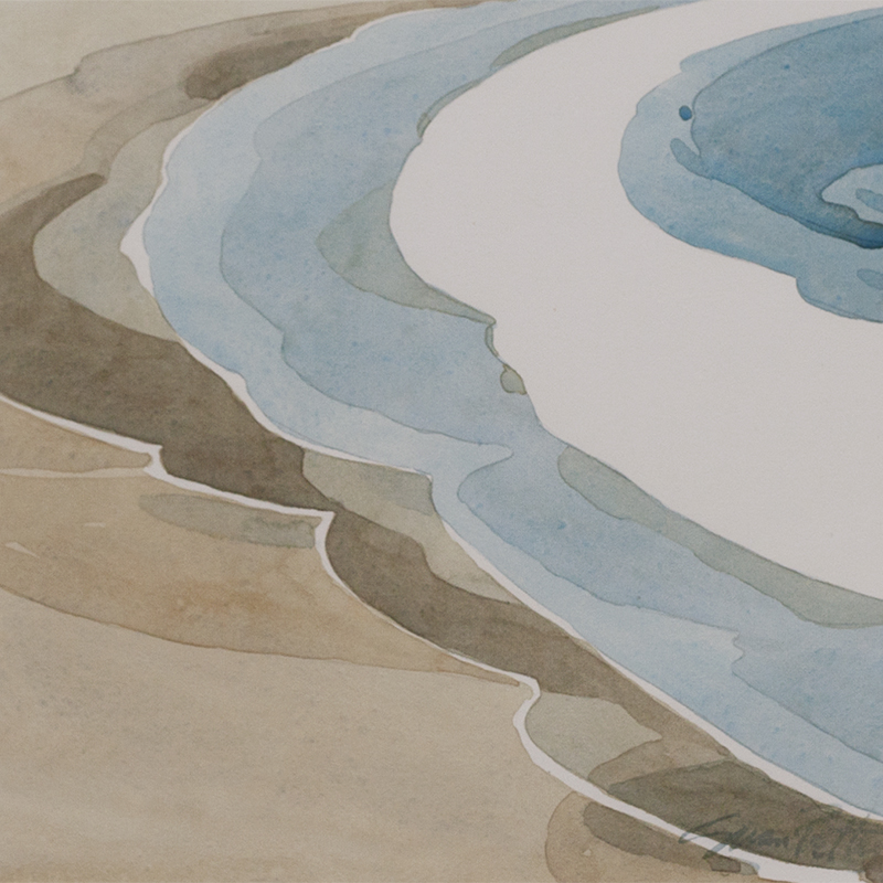petty-shoreline2.jpg