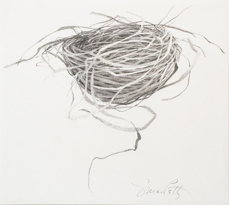 petty nest.jpg