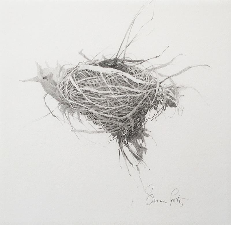 petty nest4.jpg