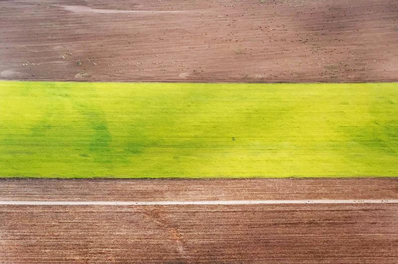 Bill Dewey   Santa Ynez Valley Stripes   photograph 7.25×11 in.