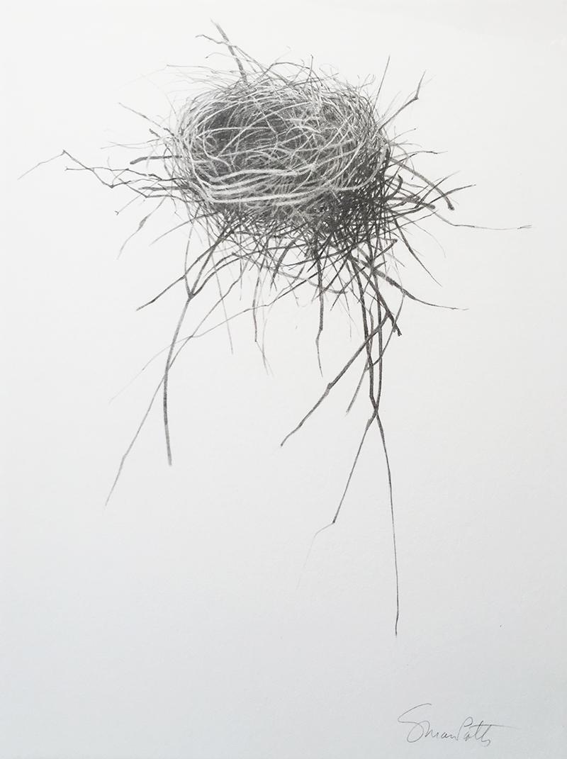 Nest VI