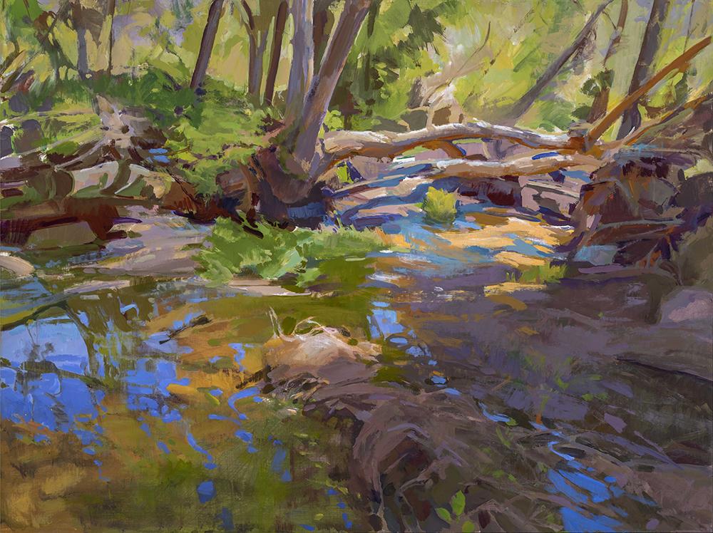 Marcia Burtt, Dappled Light, Escondido Creek, acrylic, 30x40 in.