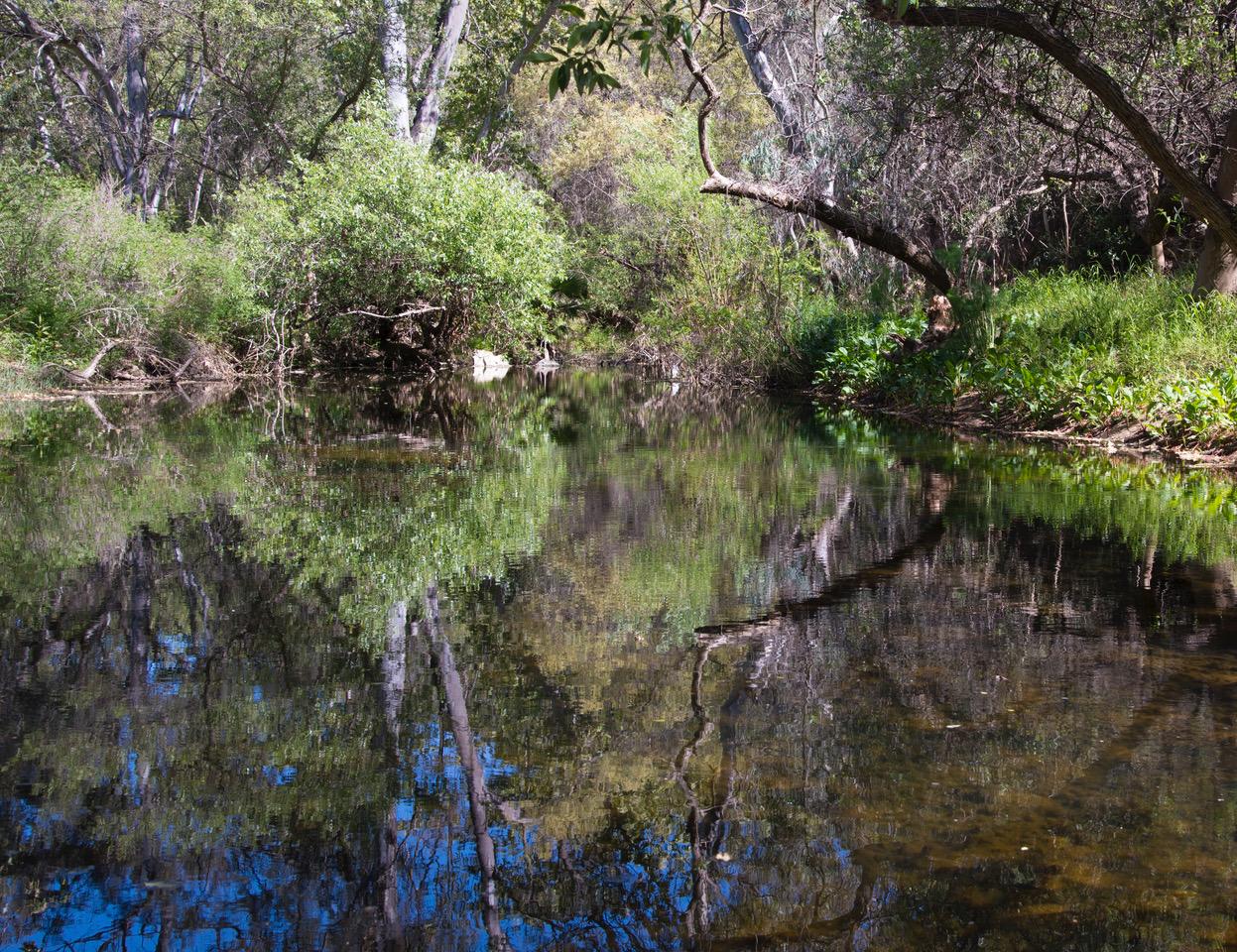 Photographs of Escondido Creek by Bill Dewey