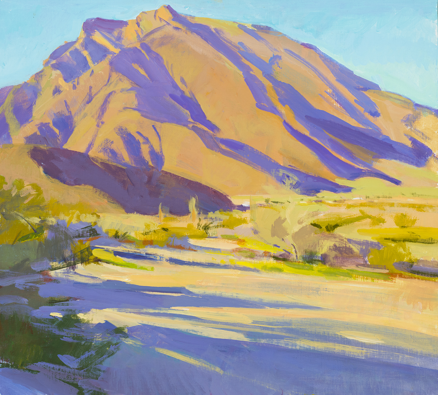 Marcia Burtt,  Indian Head, Borrego , 18x20 in. acrylic.