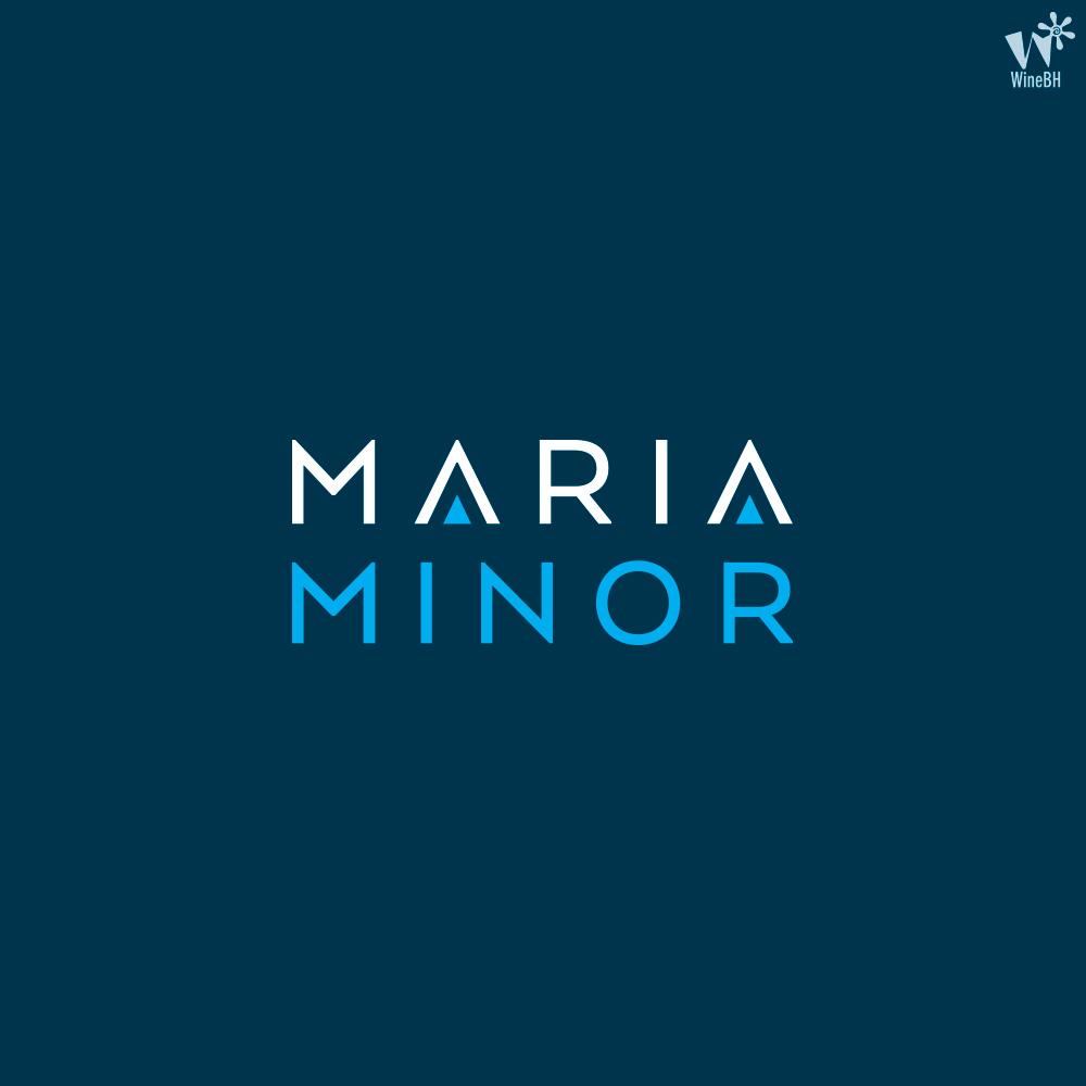 logo-MARIA-MINOR-COLOR-LOGOTIPE-BACKGROUND-BLUE.jpg