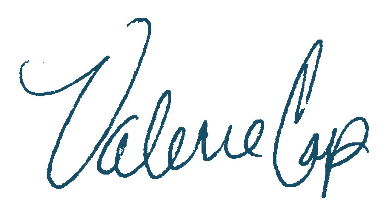 vcap_signature_blue-01.png