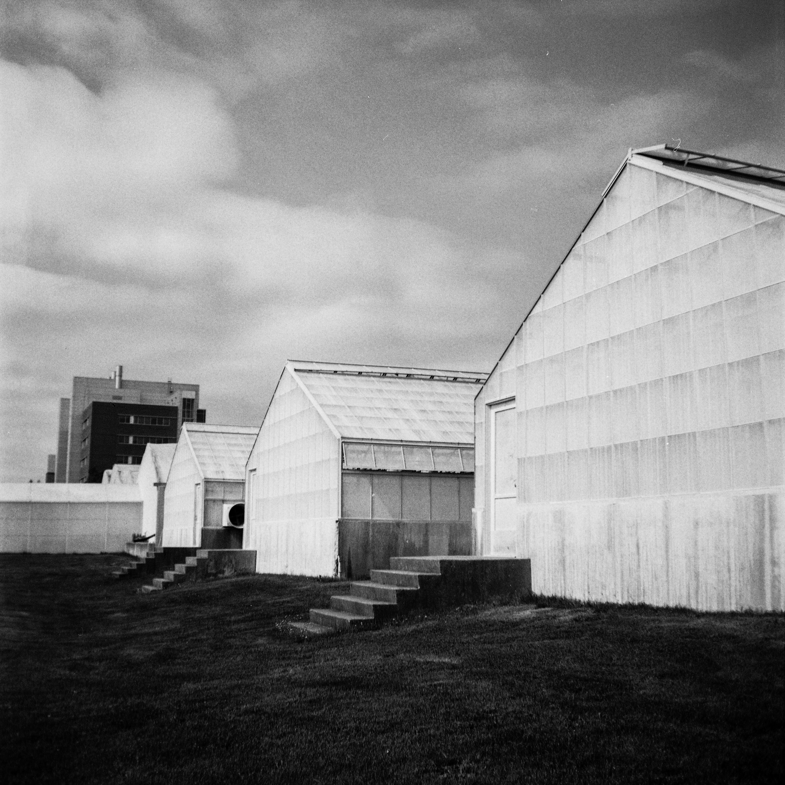 1949 Kodak Brownie Hawkeye Photo Medium Format 620 Film Zoe Kissel Photo East Lansing MSU Campus