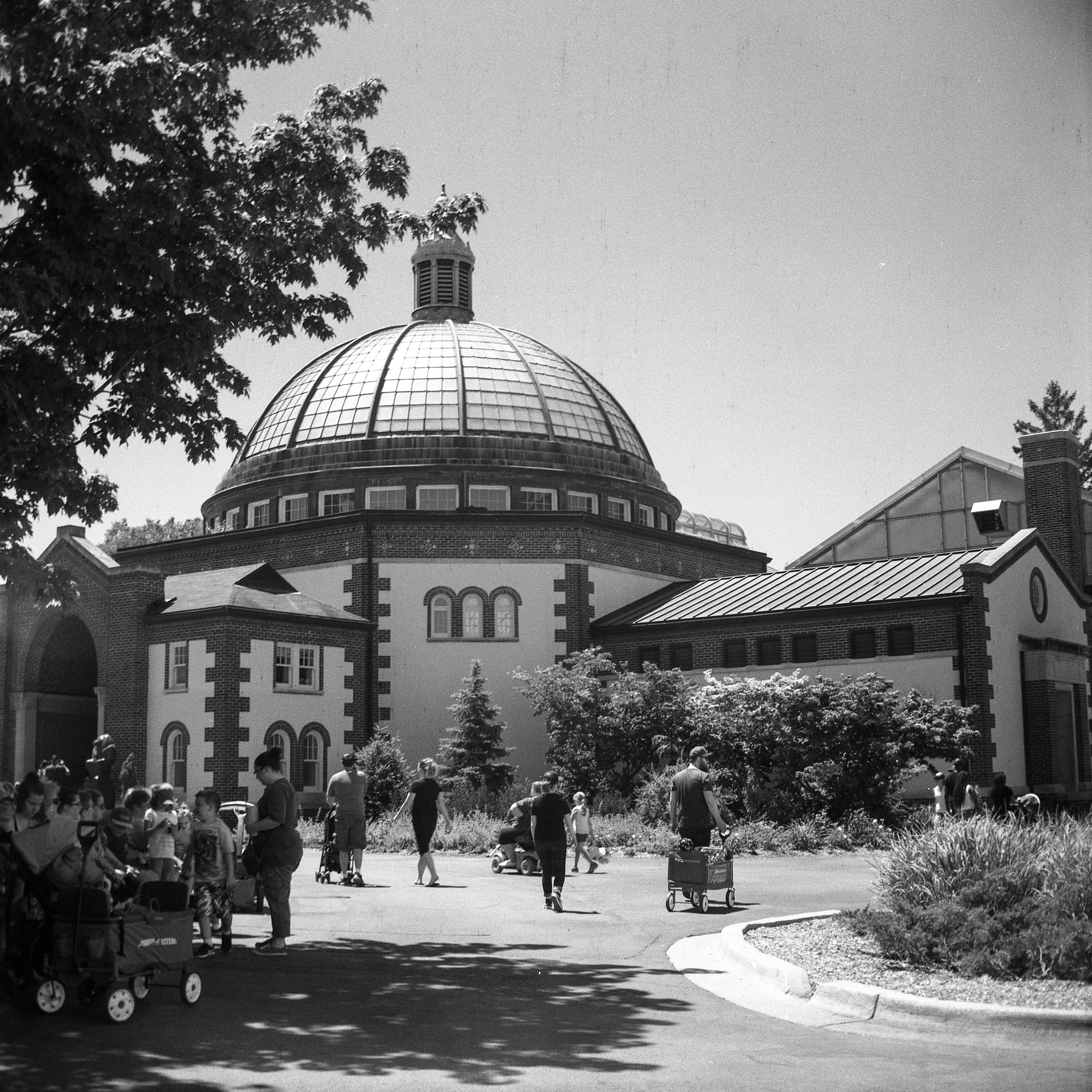 1949 Kodak Brownie Hawkeye Photo Medium Format 620 Film Zoe Kissel Photo detroit zoo