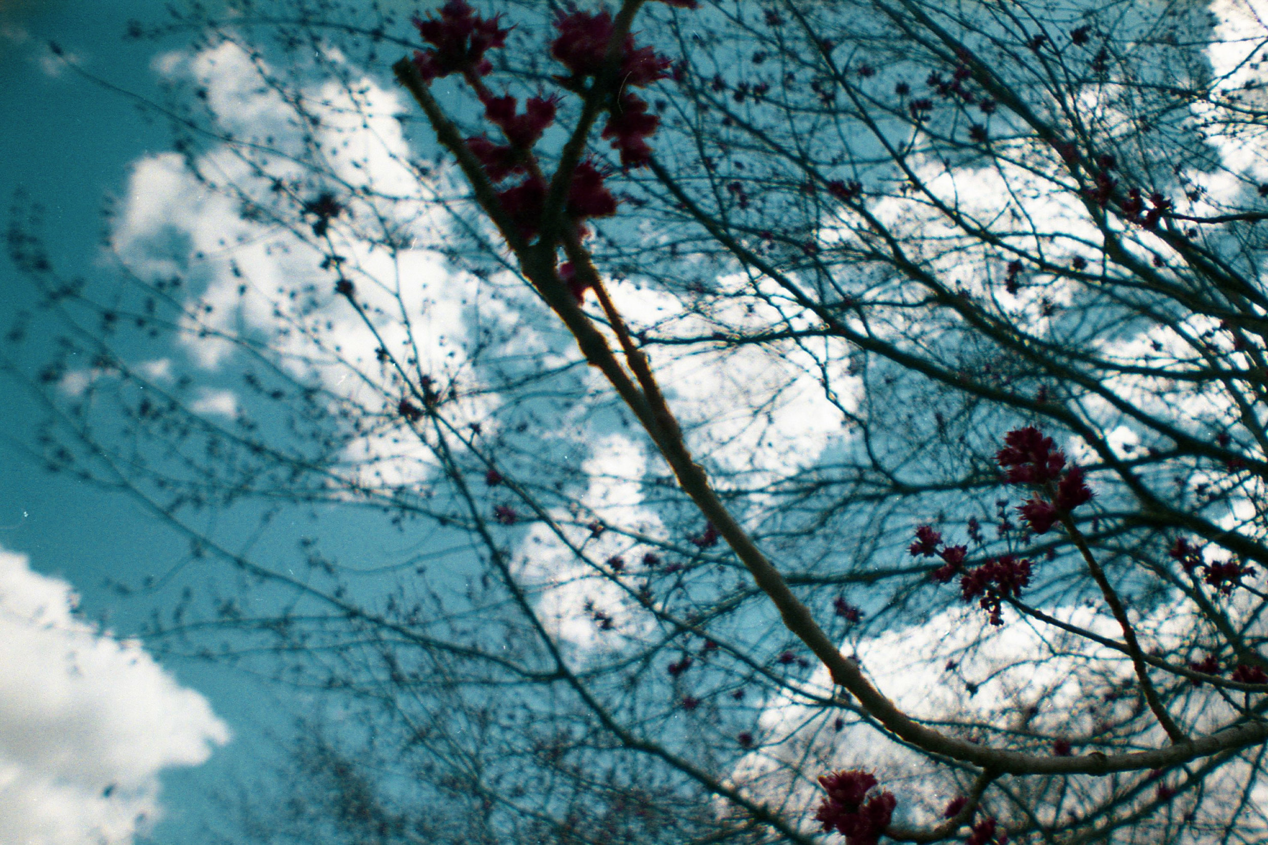35mm_Edit_025.jpg