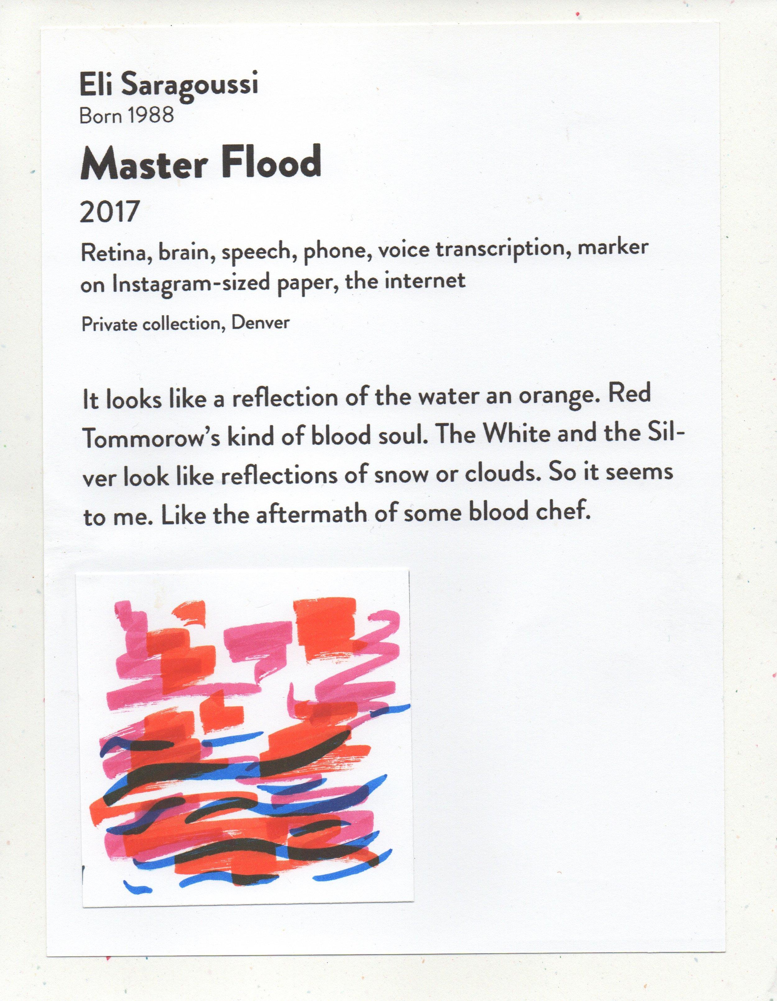 Master Flood DAM Untitled April 28, 2017.jpeg