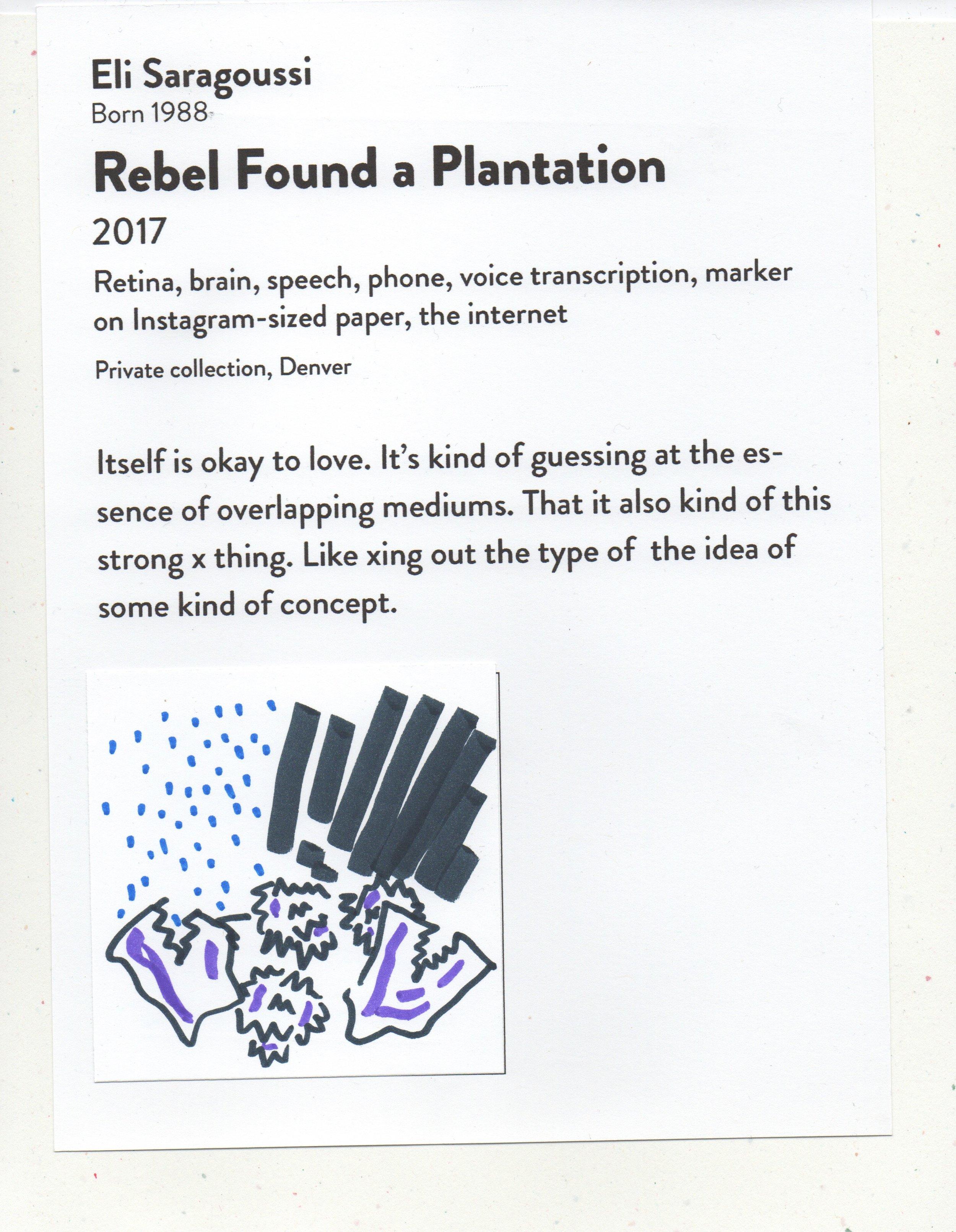 Rebel Found a Plantation DAM Untitled April 28, 2017.jpeg