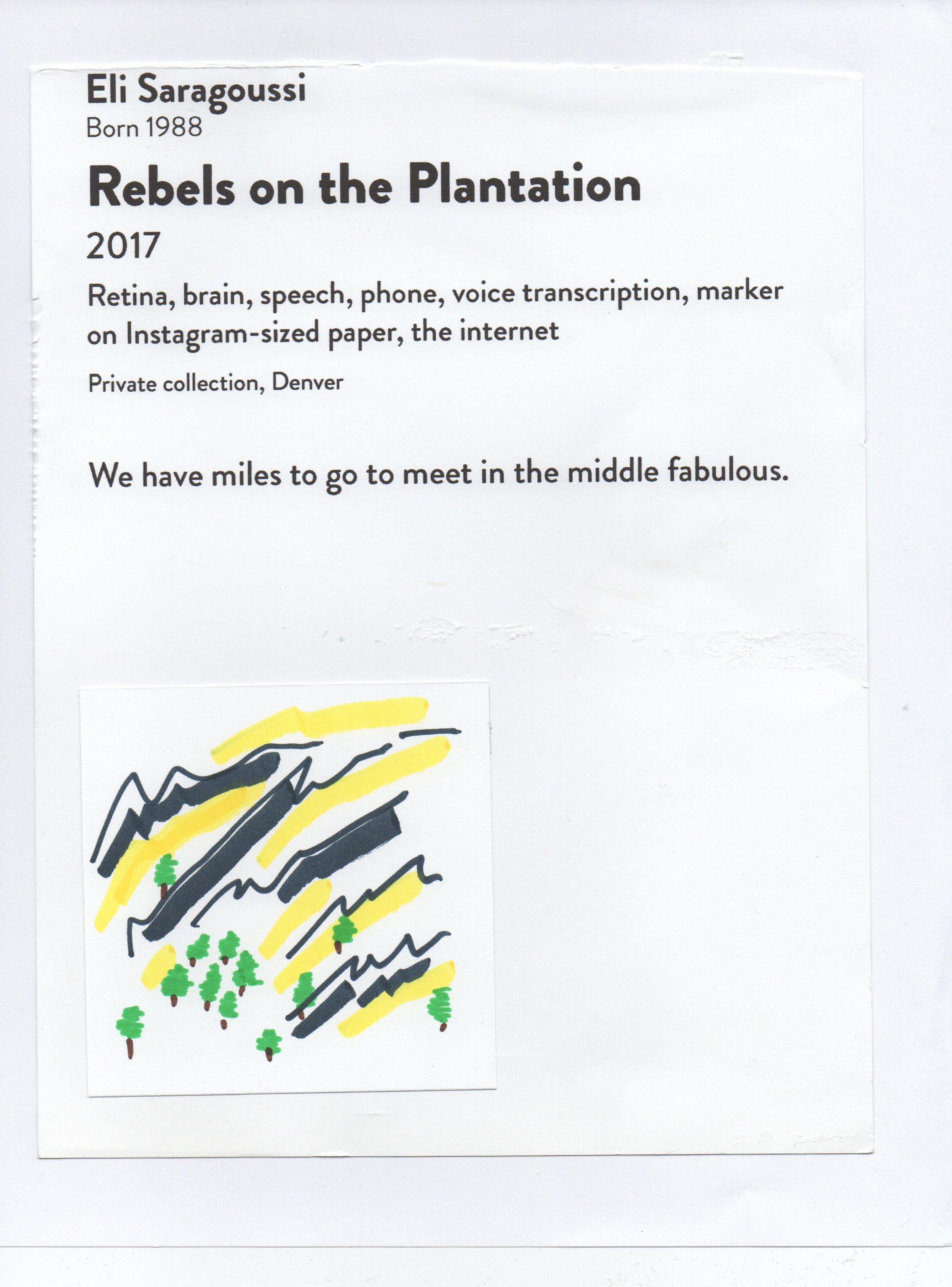 Rebels on the Plantation DAM Untitled April 28, 2017.jpeg