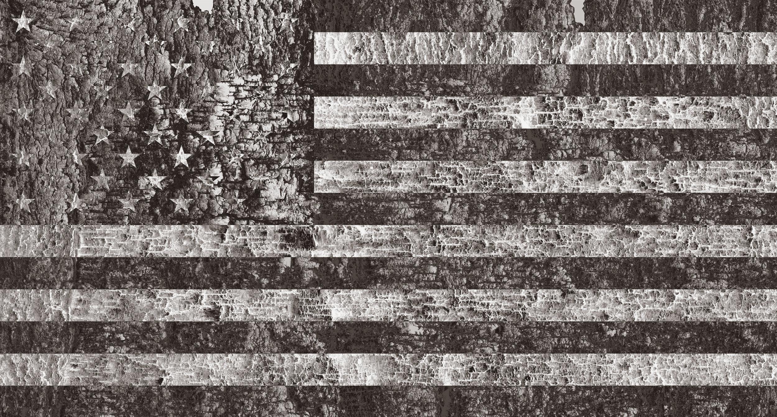 Bark_flag_difference.jpg