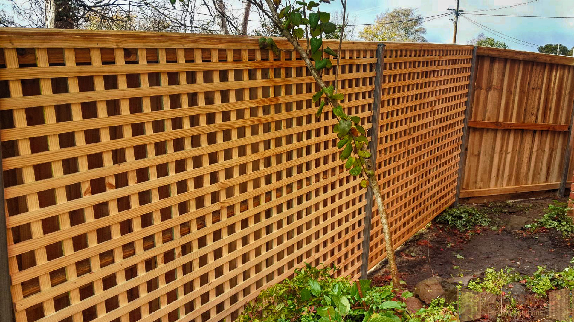 Lattice work on Timber Fencing