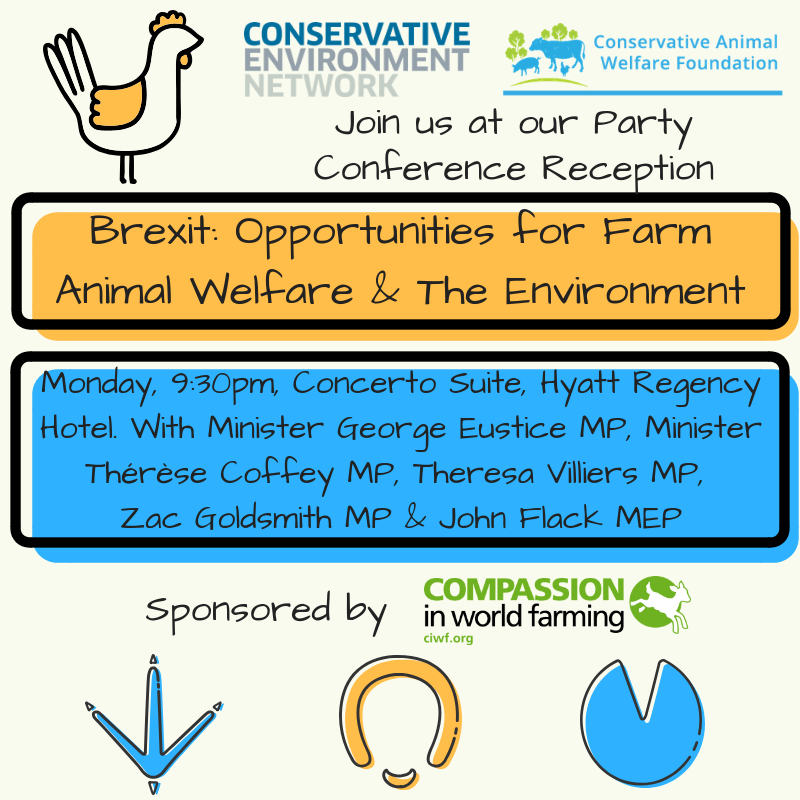 CAWF Event graphic-3.png