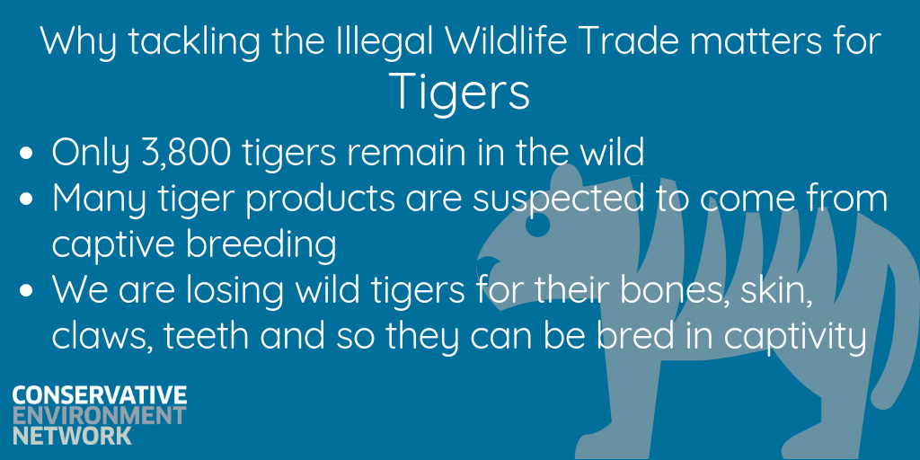 Why tackling the Illegal Wildlife Trade matters-9.png