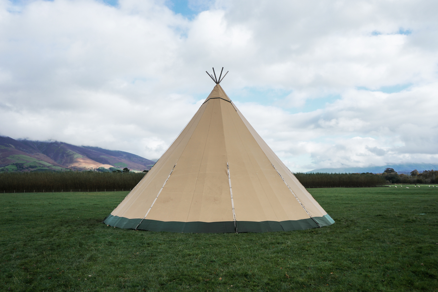 The giant Tentipi