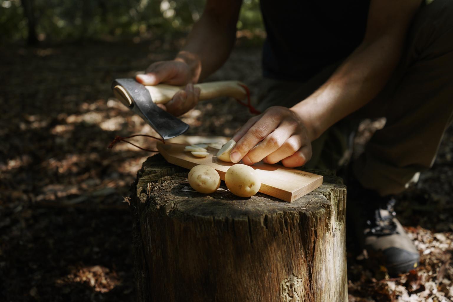 hikers_hatchet_4.jpg