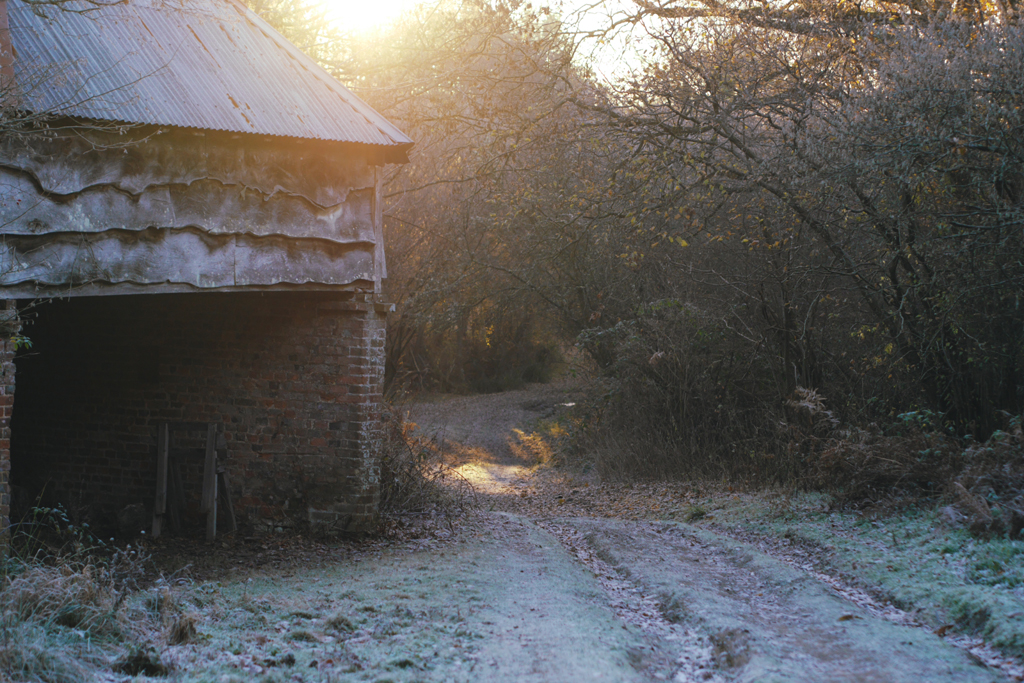 A beautiful cold and frosty start to the day.