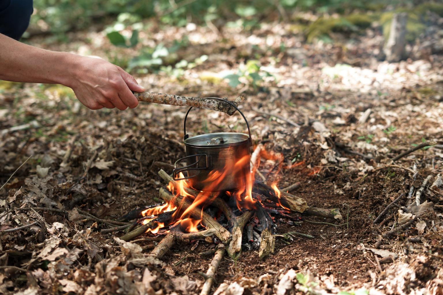 conifer_coffee_in_the_woods_1.jpg