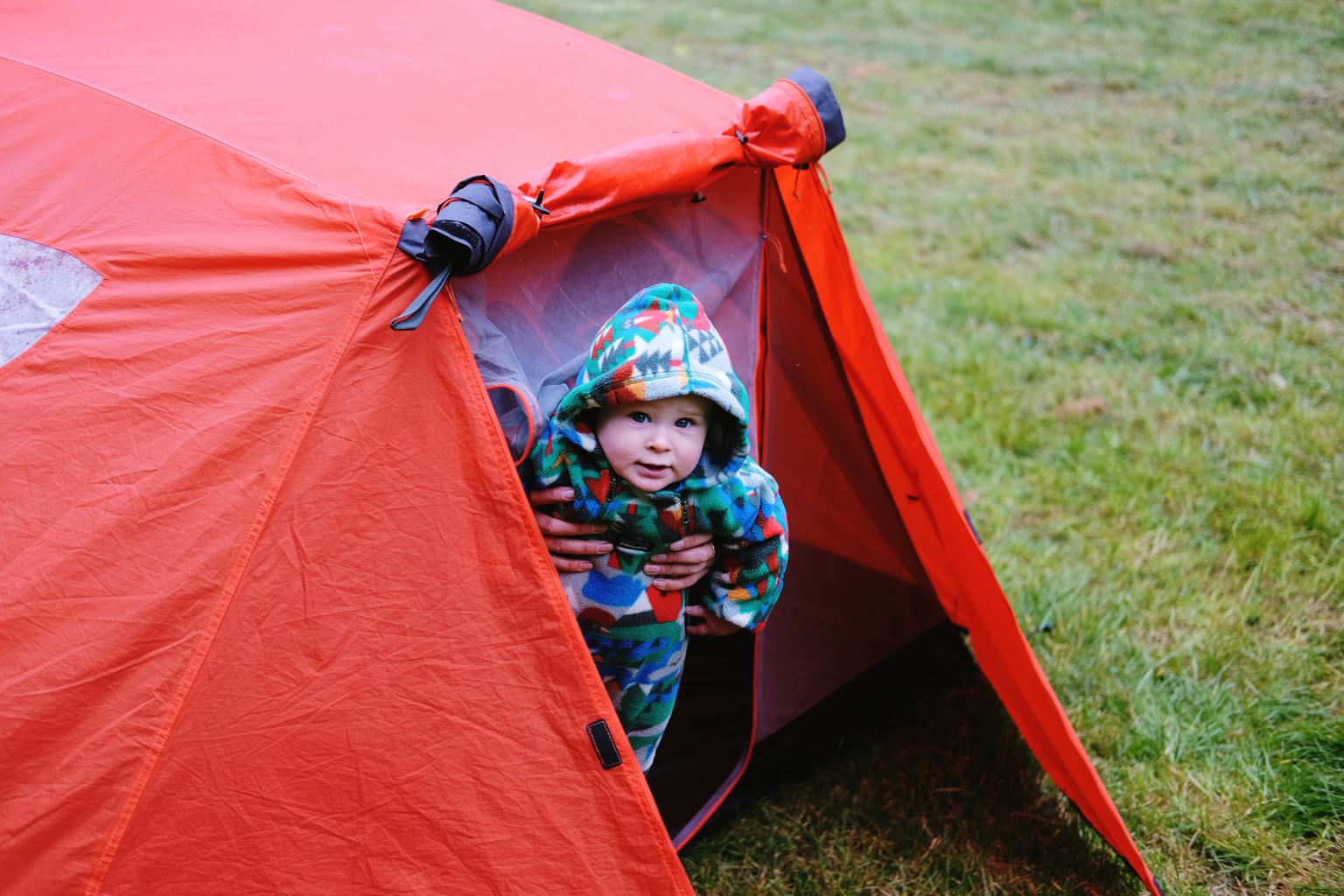 Baby Benji bundled up in Patagonia, toasty and warm