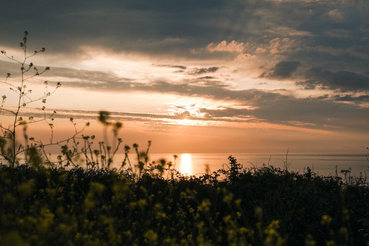 Cornwall_2019_10.jpg