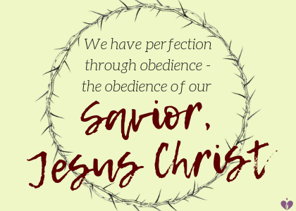 we have perfection through jesus - blog.png