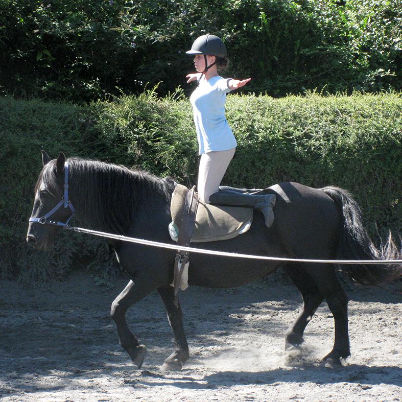 stage d'équitation voltige