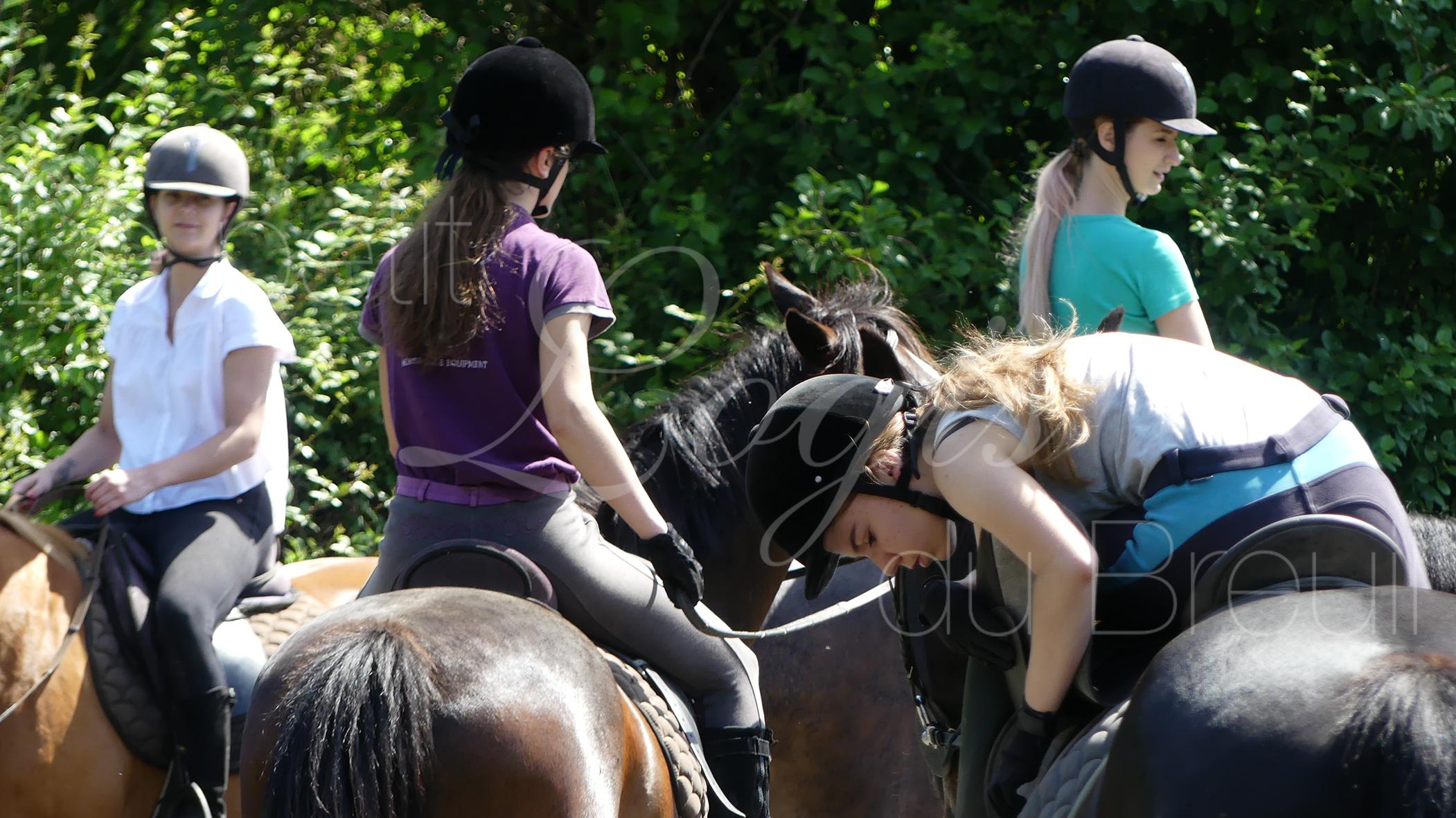 cour d'équitation 3.jpg