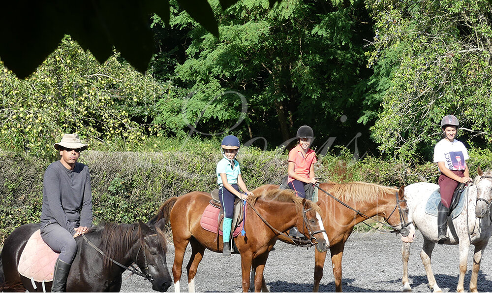 depart-promenade-cheval-enfant.jpg