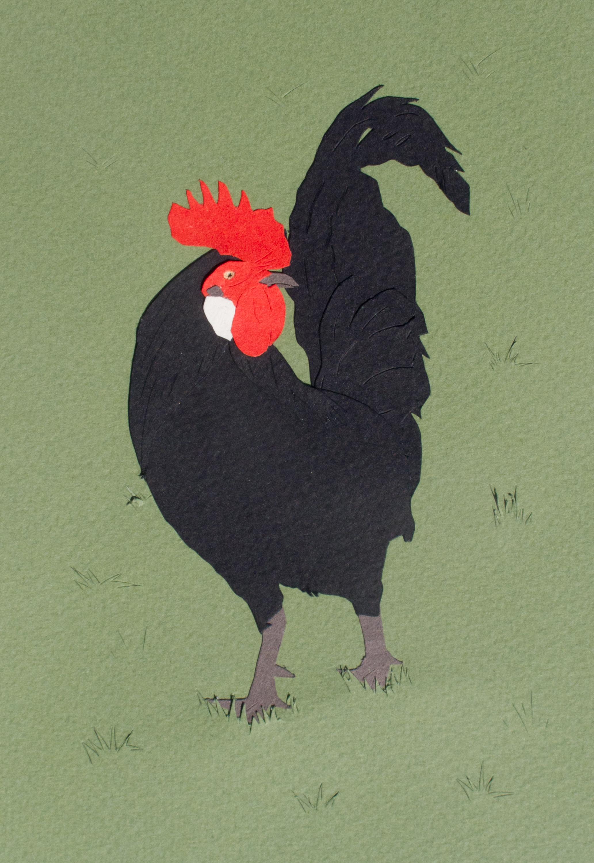 schick-21The Flock 1, 6- x 4-.JPG