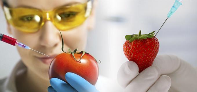 alimentos-transgenicos-frutas.jpg