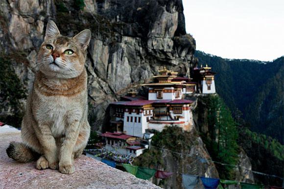 Bután.jpg