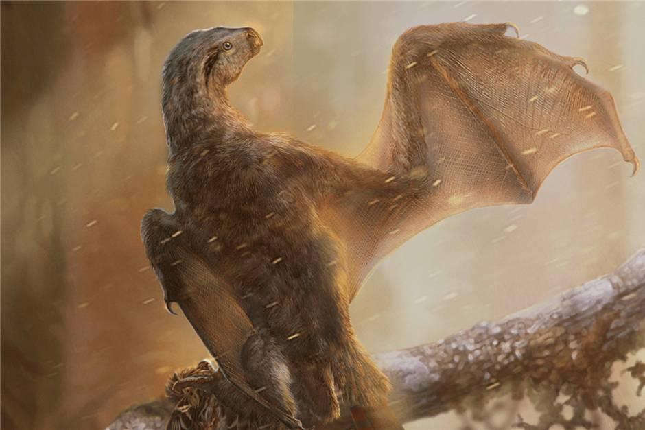 dinosaurios_nuevo.jpg