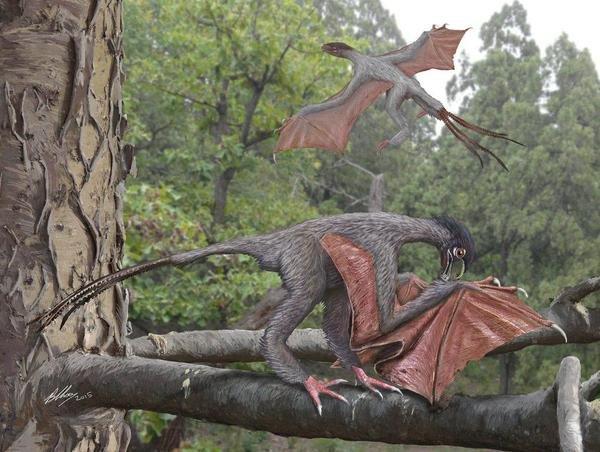 descubren-un-pequeno-dinosauri-jpg_700x0.jpg