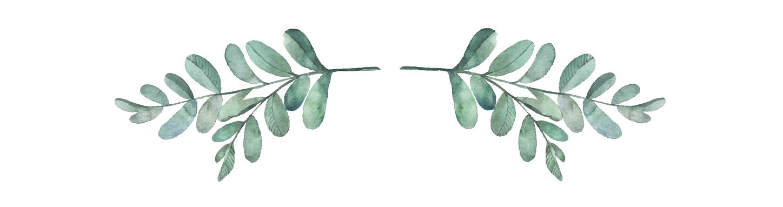 small leaves.jpg