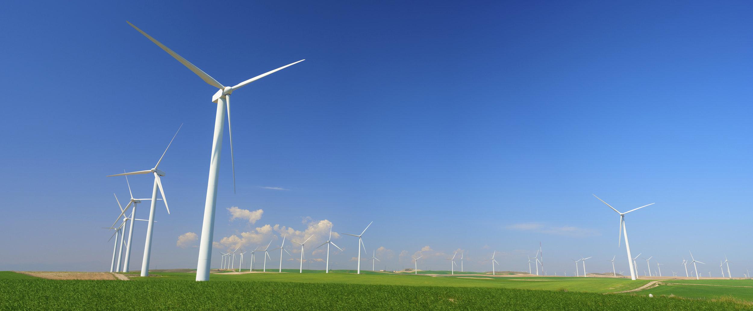 - Renewable Energy