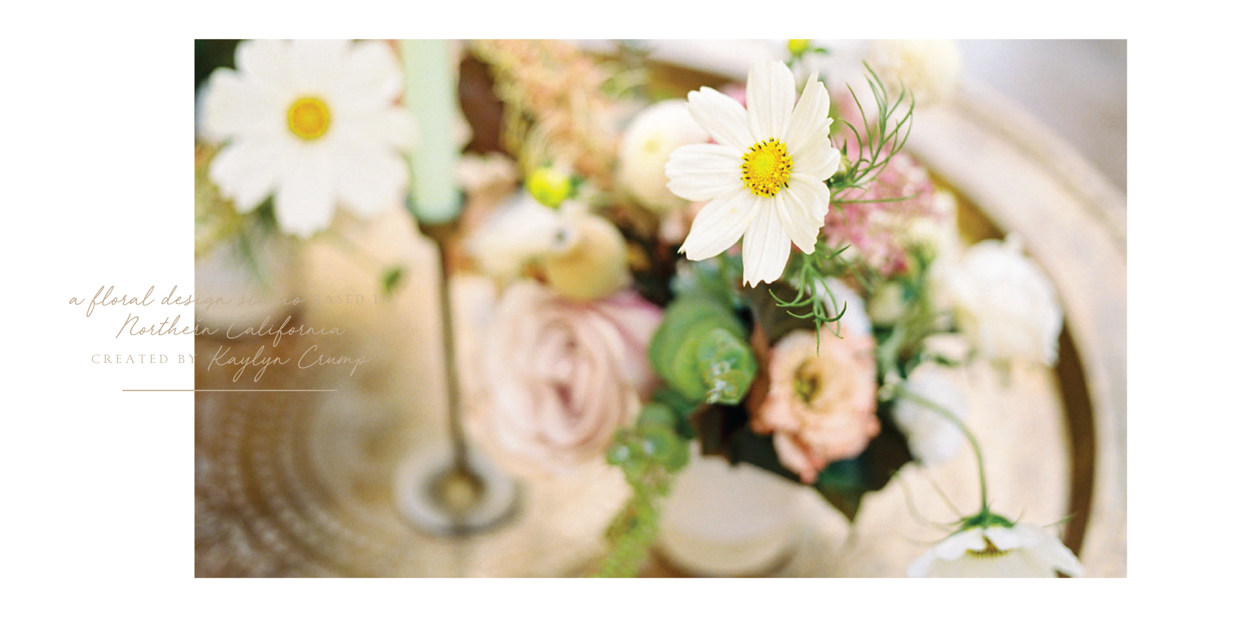 Willow & Magnolia Home Page Slider-03.png