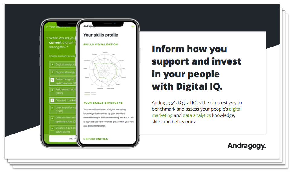Andragogy Digital IQ Assessment Guide