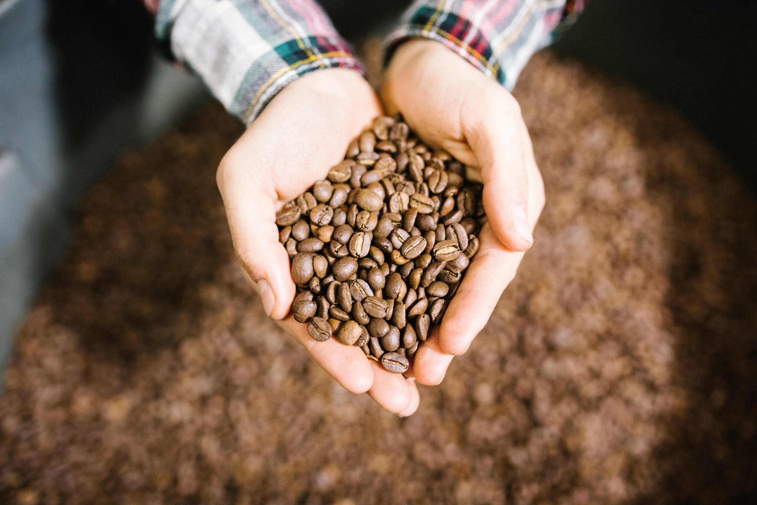 WORKING WITH NATURE - As a food brand, we are committed to bring awareness around the importance of respecting Nature in food production. We respect the seasons to provide the freshest coffee, as every producing country see its harvest time at different moments of the year.