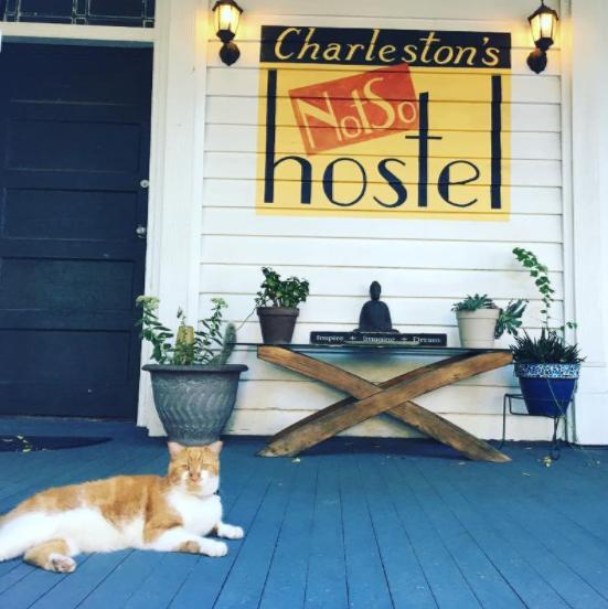 Notso Hostel Charleston SC