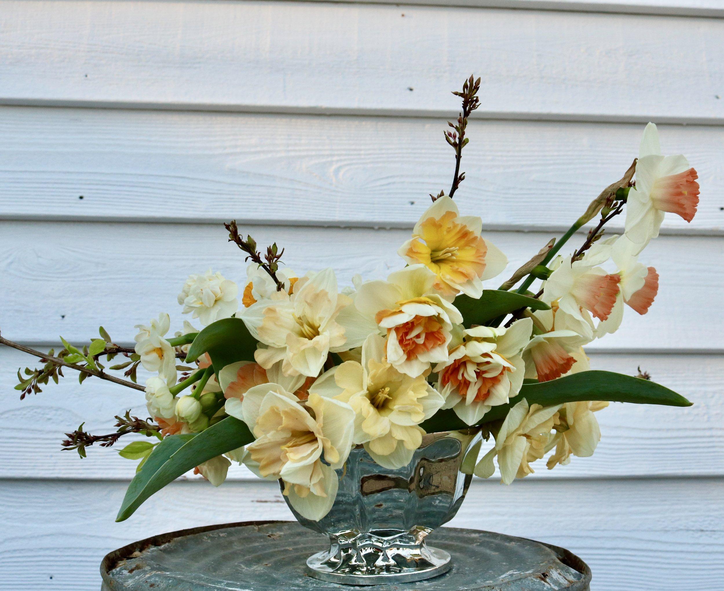 Daffodil compote.jpg