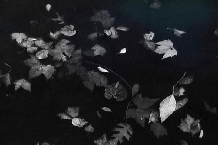 Ryusuimon Study, 2011, video still
