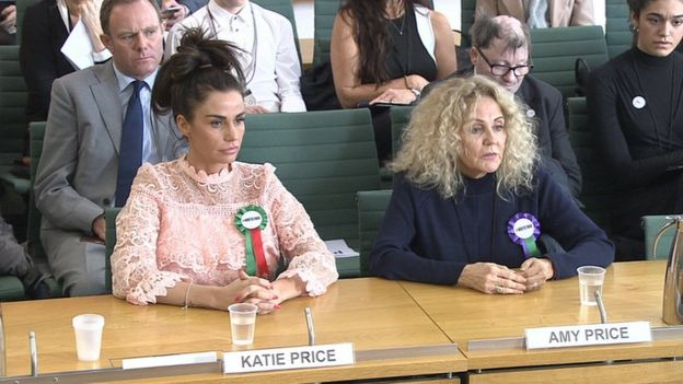 Nick Herbert supporting Katie Price as she gives evidence to a Petitions Select Committee hearing (6 Feb 2018)