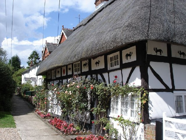 The Cat House, Henfield